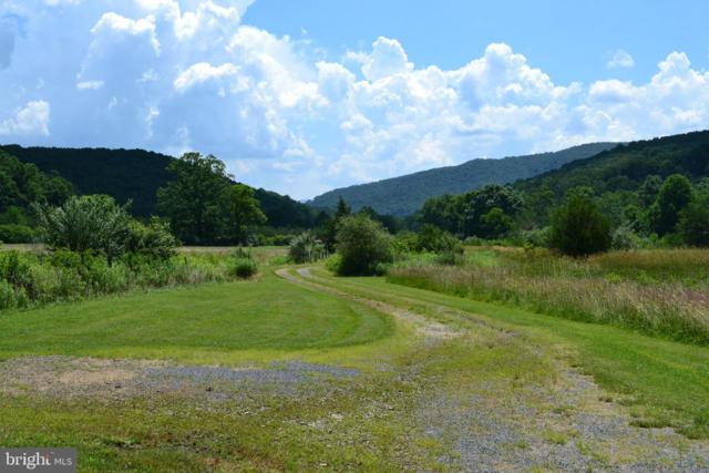 Lower Pine Grove Road, BAKER, WV 26801 (#WVHD105250) :: Bruce & Tanya and Associates