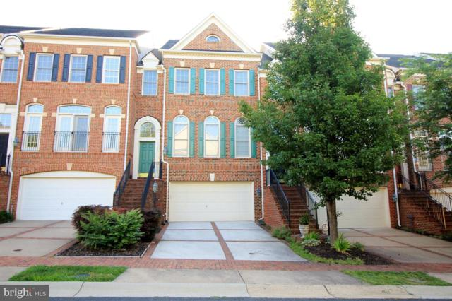 18524 Perdido Bay Terrace, LEESBURG, VA 20176 (#VALO388220) :: Gail Nyman Group