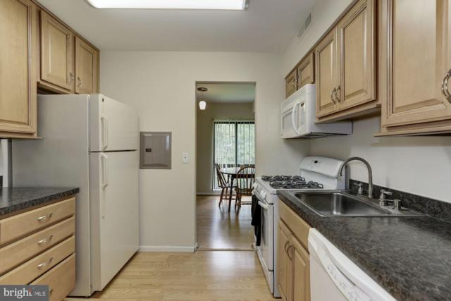 6001 Majors Lane 7O7, COLUMBIA, MD 21045 (#MDHW266256) :: The Sebeck Team of RE/MAX Preferred