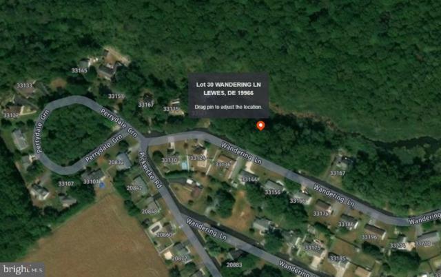 Lot 30 Wandering Lane, LEWES, DE 19966 (#DESU143214) :: The Allison Stine Team
