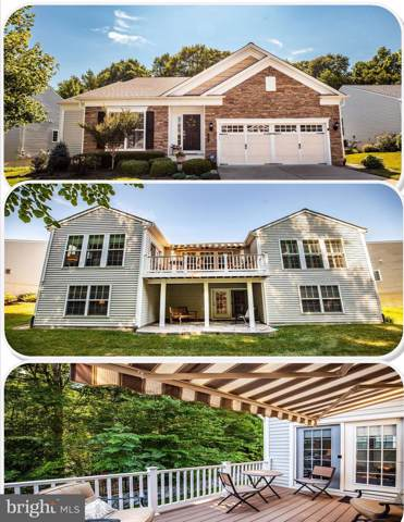 44 Battery Point Drive, FREDERICKSBURG, VA 22406 (#VAST212666) :: The Redux Group