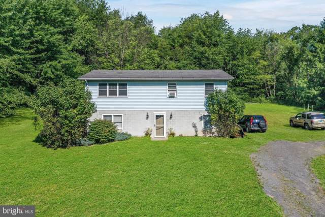 21619 Rock Wall Road, RAWLINGS, MD 21557 (#MDAL132148) :: ExecuHome Realty