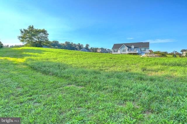 220 Hauer Terrace #181, SPRING GROVE, PA 17362 (#PAYK120856) :: The Joy Daniels Real Estate Group