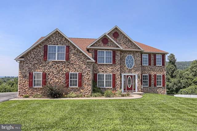 103 Farm View Court, DOUGLASSVILLE, PA 19518 (#PABK344852) :: Linda Dale Real Estate Experts