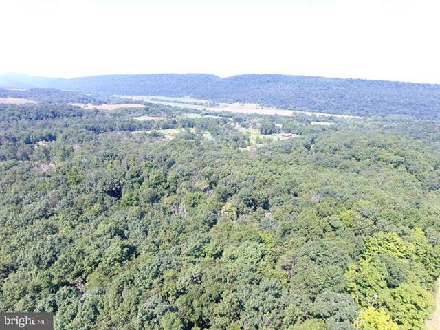 LOT 2 Thistle Ridge Drive, ROMNEY, WV 26757 (#WVHS112948) :: Homes to Heart Group