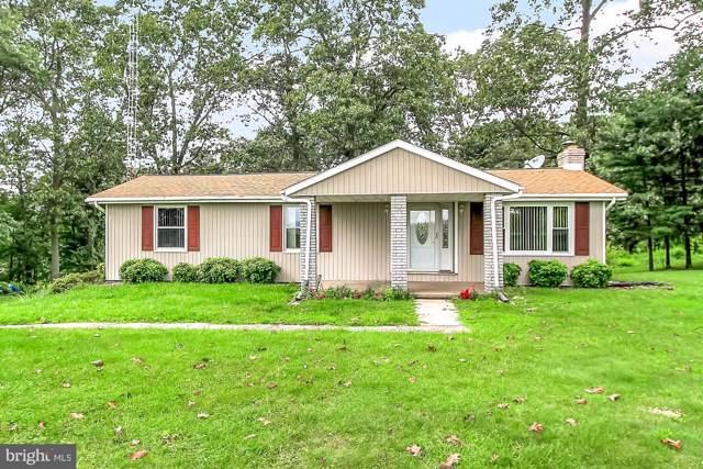 169 Burkholder Road, RED LION, PA 17356 (#PAYK121920) :: Liz Hamberger Real Estate Team of KW Keystone Realty