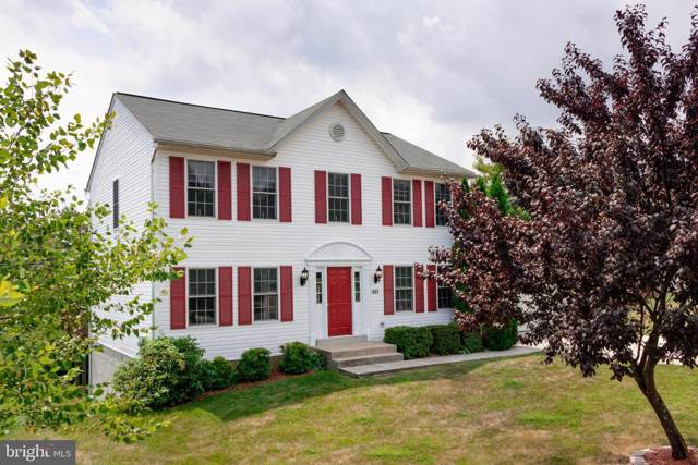 141 Redhaven Court, THURMONT, MD 21788 (#MDFR251112) :: LoCoMusings