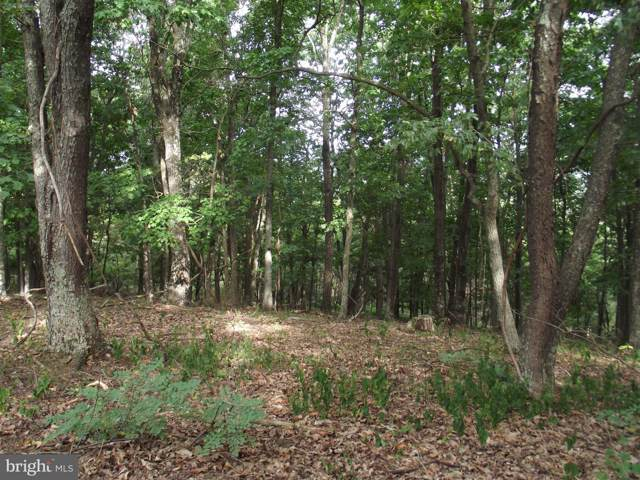 Lot 294 Winterberry Drive, MOOREFIELD, WV 26836 (#WVHD105406) :: Advance Realty Bel Air, Inc