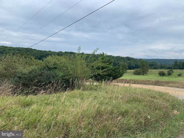 Lot 3 & 4 Feller Drive, LEVELS, WV 25431 (#WVHS113050) :: Dart Homes