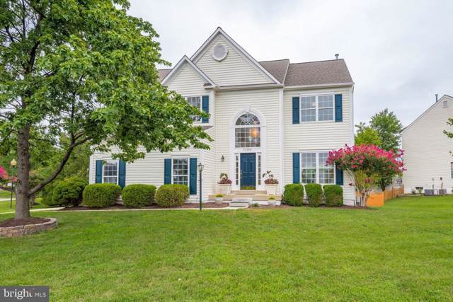 20788 Laplume Place, ASHBURN, VA 20147 (#VALO392554) :: AJ Team Realty