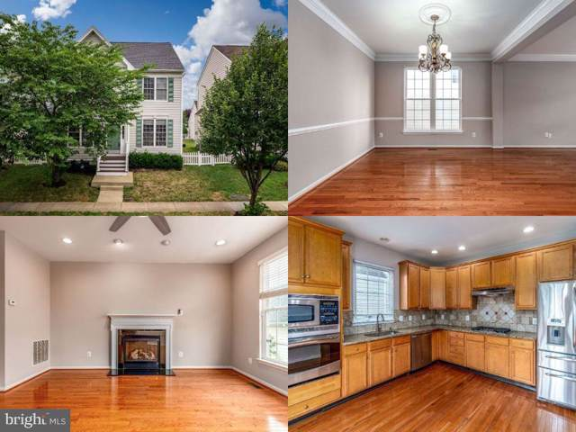 42476 Mandolin Street, CHANTILLY, VA 20152 (#VALO392656) :: The Licata Group/Keller Williams Realty
