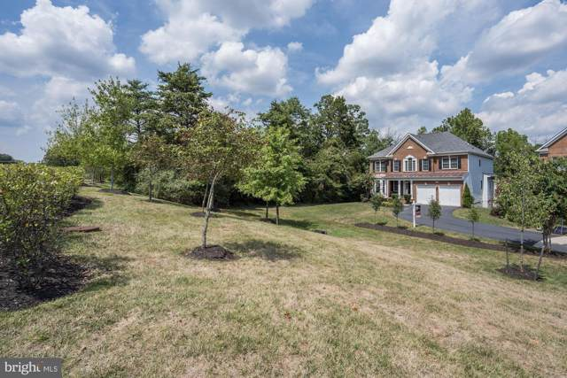 41504 Hitchin Court, ALDIE, VA 20105 (#VALO392802) :: Keller Williams Pat Hiban Real Estate Group