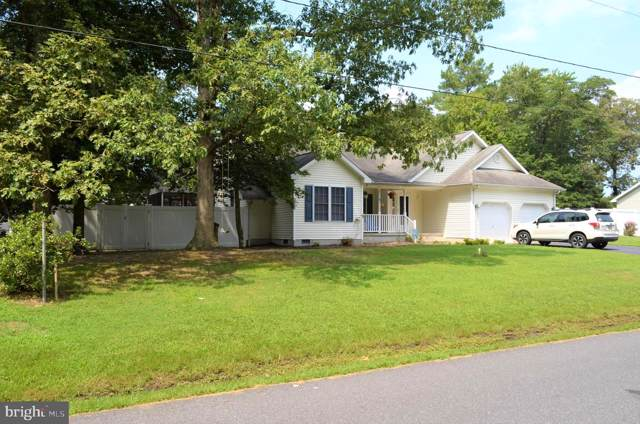 207 Sandy Beach Drive, DAGSBORO, DE 19939 (#DESU146612) :: HergGroup Horizon