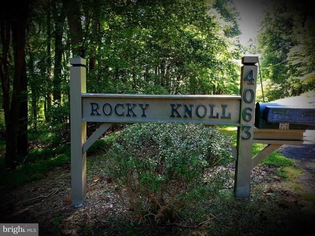 4063 Rolling Hills Drive, DELAPLANE, VA 20144 (#VAFQ162036) :: LoCoMusings