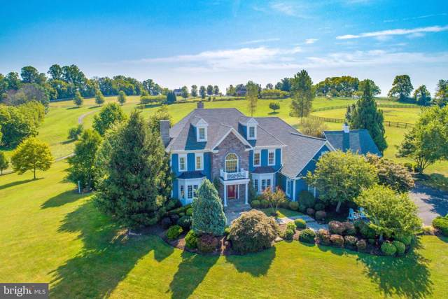 16080 Gold Cup Lane, PAEONIAN SPRINGS, VA 20129 (#VALO393286) :: Tom & Cindy and Associates
