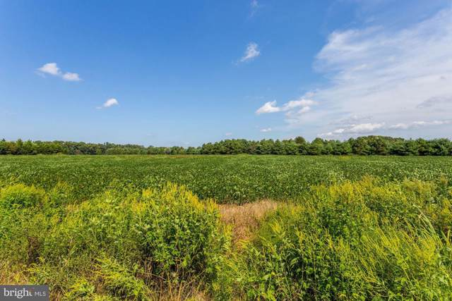26232 Auction Rd Lot Route 313, FEDERALSBURG, MD 21632 (#MDCM122894) :: Atlantic Shores Sotheby's International Realty