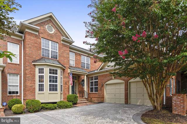 18428 Lanier Island Square, LEESBURG, VA 20176 (#VALO393420) :: Labrador Real Estate Team