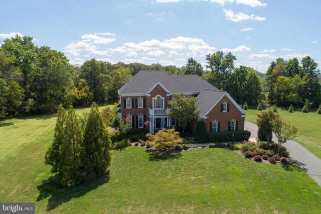 16799 Chestnut Overlook Drive, PURCELLVILLE, VA 20132 (#VALO393570) :: EXP Realty