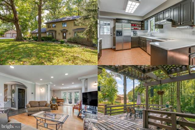 42087 Sweet Spring Lane, LEESBURG, VA 20176 (#VALO393700) :: Blue Key Real Estate Sales Team