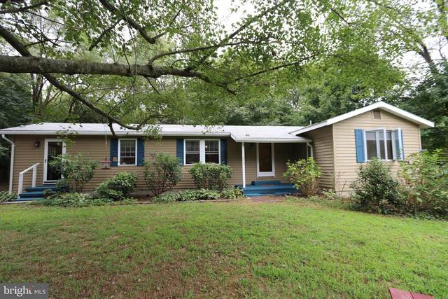 11078 Central Avenue, RIDGELY, MD 21660 (#MDCM122964) :: The Vashist Group