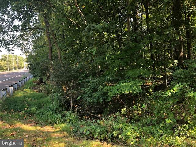 1080 Beech Hollow Road, AMBLER, PA 19002 (#PAMC624568) :: The John Kriza Team