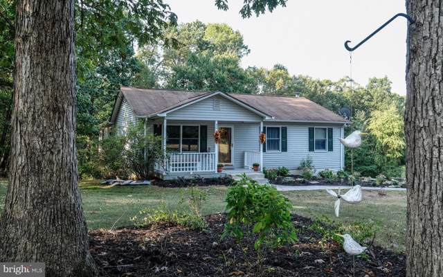 50 Shenandoah Hgts, FRONT ROYAL, VA 22630 (#VAWR138094) :: Keller Williams Pat Hiban Real Estate Group