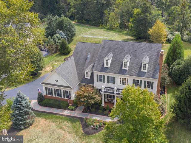 40771 Black Gold Place, LEESBURG, VA 20176 (#VALO394686) :: Tom & Cindy and Associates