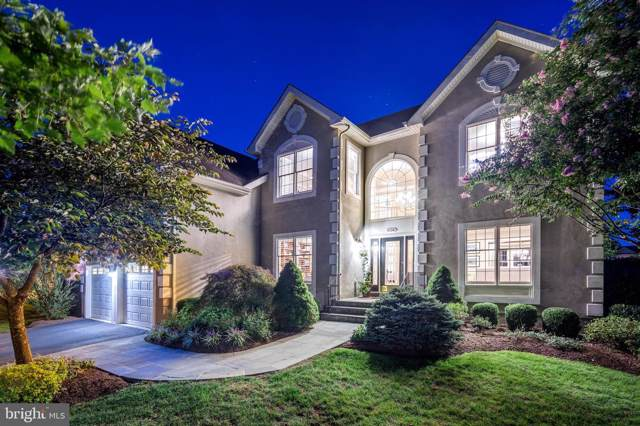 43241 Augustine Place, ASHBURN, VA 20147 (#VALO395040) :: Colgan Real Estate