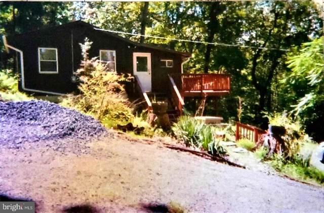 1554 Khyber Pass Rd, LINDEN, VA 22642 (#VAWR138178) :: Colgan Real Estate