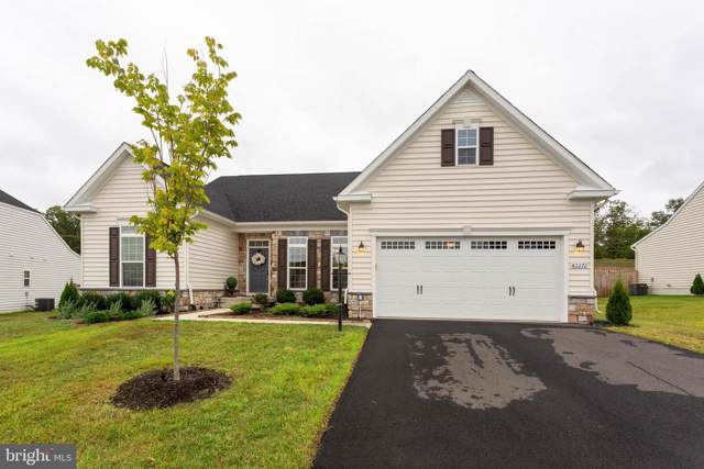 42272 Watling Court, CHANTILLY, VA 20152 (#VALO395056) :: The Licata Group/Keller Williams Realty