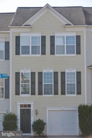 22669 High Haven Terrace, ASHBURN, VA 20148 (#VALO395104) :: Colgan Real Estate