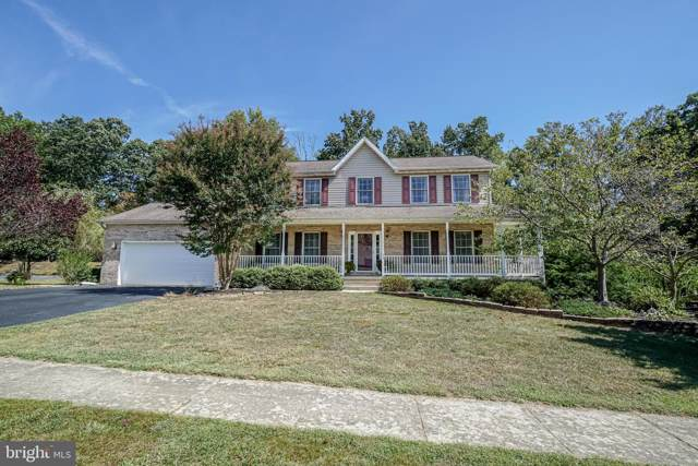 93 Watson Way, NORTH EAST, MD 21901 (#MDCC166196) :: The Daniel Register Group