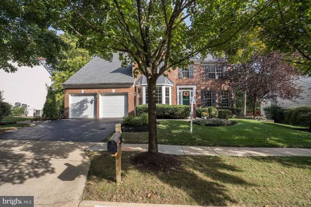 25272 Ripleys Field Drive, CHANTILLY, VA 20152 (#VALO395308) :: Network Realty Group