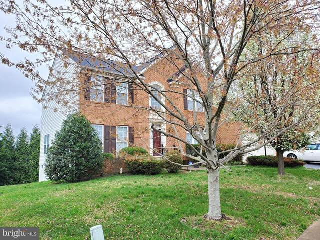 4 Stanhope Court, STAFFORD, VA 22554 (#VAST215384) :: Debbie Dogrul Associates - Long and Foster Real Estate
