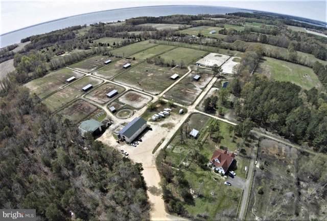 41191 Breton Beach Road, LEONARDTOWN, MD 20650 (#MDSM165240) :: The Licata Group/Keller Williams Realty
