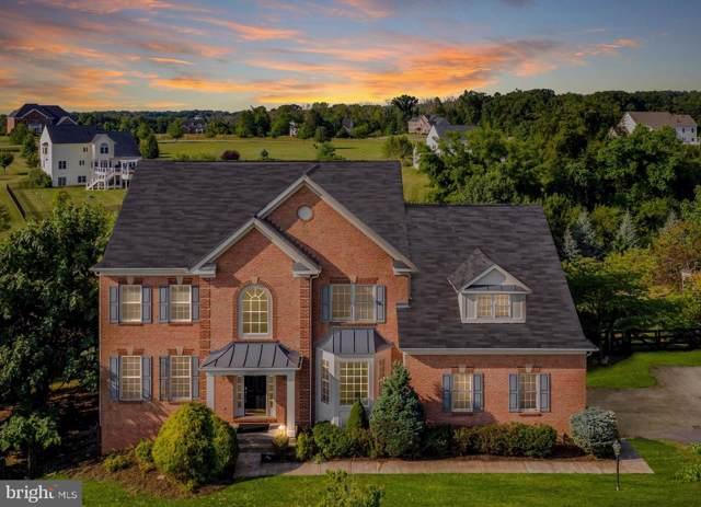 42121 Glynn Tarra Place, LEESBURG, VA 20176 (#VALO396056) :: Blue Key Real Estate Sales Team