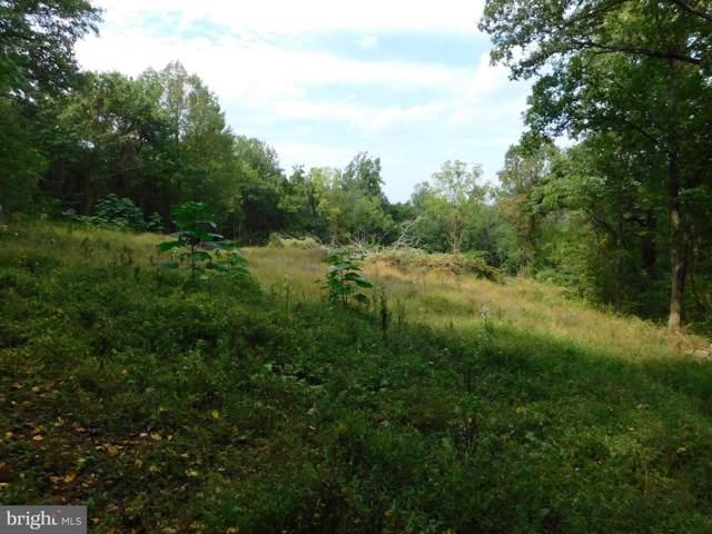 Lot 1 Old Orchard Rd, LINDEN, VA 22642 (#VAWR138294) :: Arlington Realty, Inc.