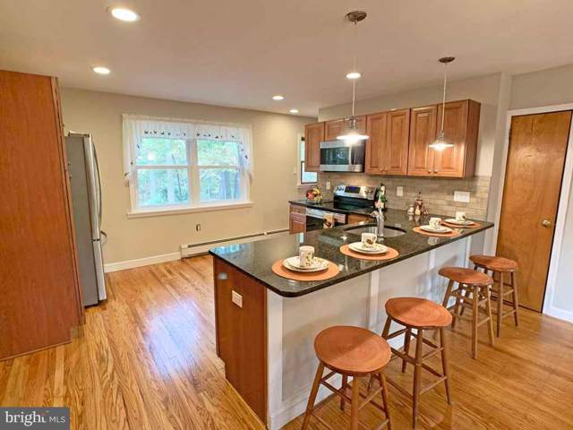 4196 Sunnyside Drive, DOYLESTOWN, PA 18902 (#PABU481770) :: Jason Freeby Group at Keller Williams Real Estate