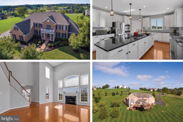 17567 Tobermory Place, LEESBURG, VA 20175 (#VALO396670) :: Network Realty Group