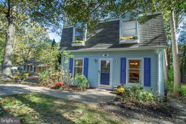 557 West Drive, SEVERNA PARK, MD 21146 (#MDAA416164) :: Keller Williams Flagship of Maryland