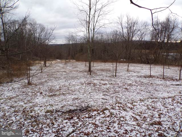 East Side of Brockto Brockton Mountain, BARNESVILLE, PA 18214 (#PASK128302) :: Ramus Realty Group