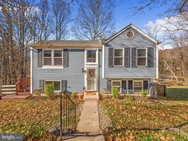 1710 Brookshire Run, POINT OF ROCKS, MD 21777 (#MDFR255190) :: The Putnam Group