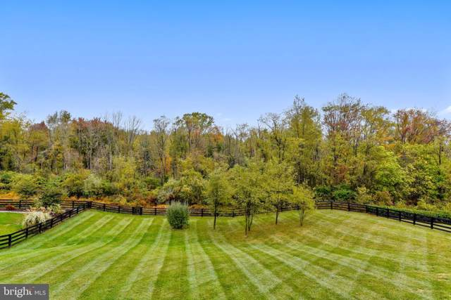 41728 Wakehurst Place, LEESBURG, VA 20176 (#VALO397364) :: Great Falls Great Homes