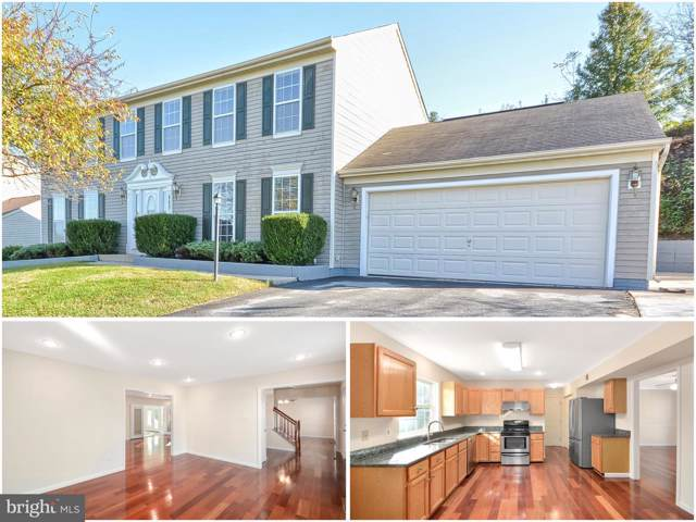 117 Ivy Hill Drive, MIDDLETOWN, MD 21769 (#MDFR255540) :: The Maryland Group of Long & Foster