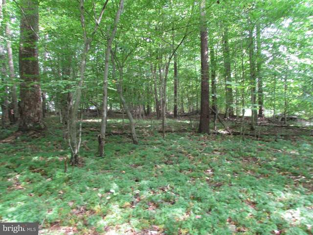 Lot 44 Moody Town Road, BUMPASS, VA 23024 (#VALA120086) :: RE/MAX Cornerstone Realty