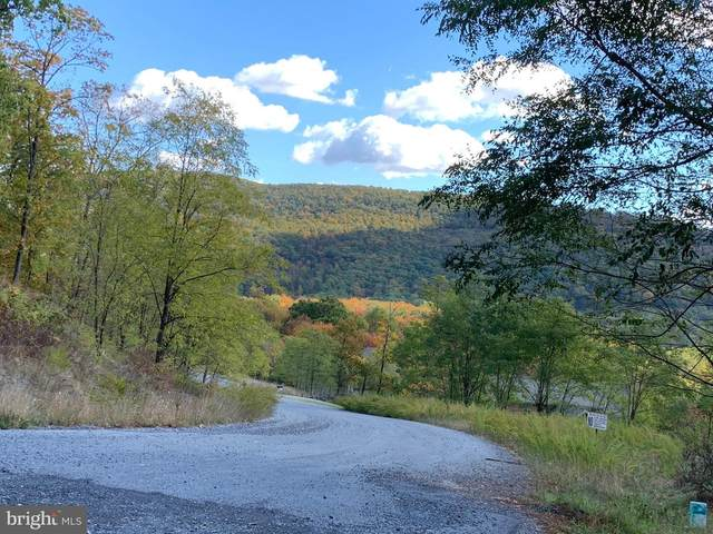 Mountainside Drive, MERCERSBURG, PA 17236 (#PAFL169368) :: Realty ONE Group Unlimited