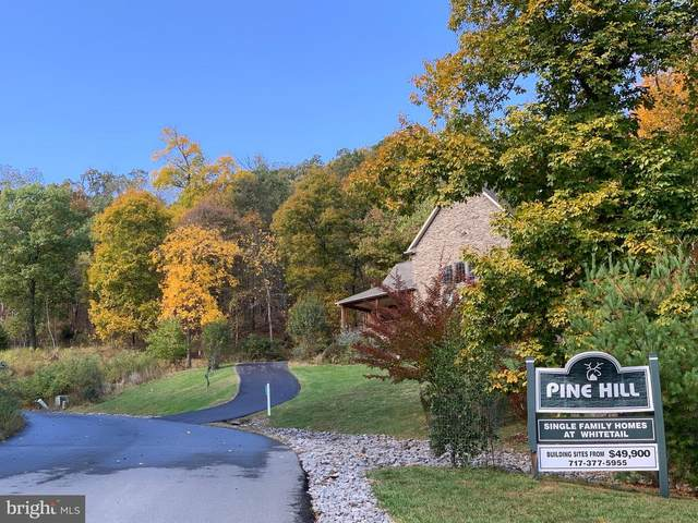Mountainside Drive, MERCERSBURG, PA 17236 (#PAFL169370) :: Realty ONE Group Unlimited
