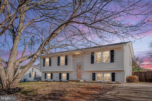 229 Oakridge Drive, STAFFORD, VA 22556 (#VAST216232) :: Dart Homes