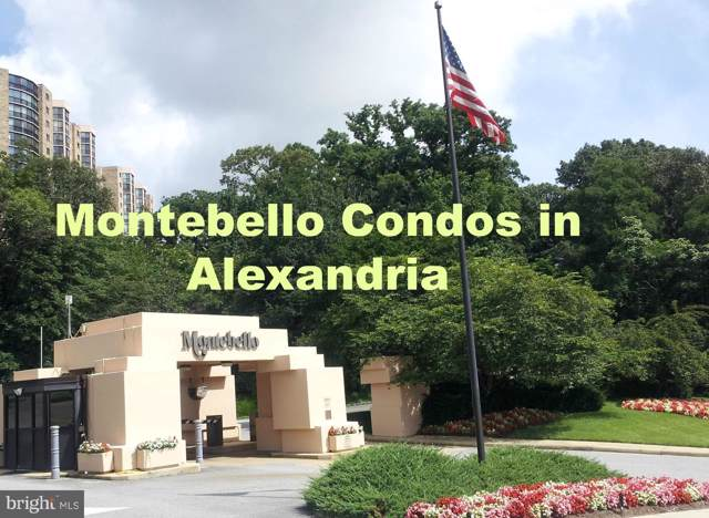 5904 Mount Eagle Drive 1517A (1517&151, ALEXANDRIA, VA 22303 (#VAFX1097426) :: RE/MAX Cornerstone Realty