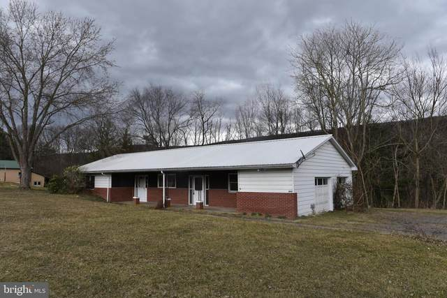 18117 Hares Valley Road, MAPLETON DEPOT, PA 17052 (#PAHU101352) :: The Jim Powers Team